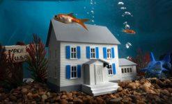 Staat je huis onder water?